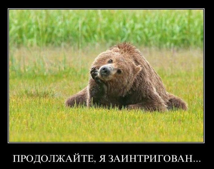 image.php?mode=medium&album_id=6&image_id=320